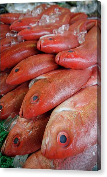 Fish Market Canvas Print - Fresh Red Snapper At The Fish Market by Chris Pinchbeck