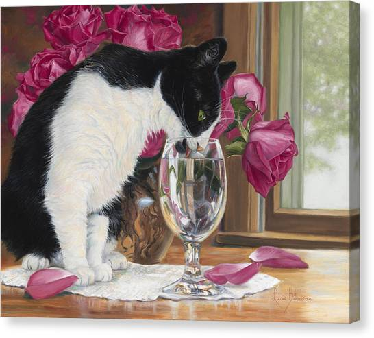Cat Canvas Print - Fresh Water by Lucie Bilodeau