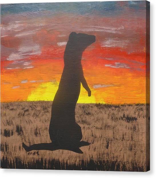 Black-footed Ferret Canvas Print - Frettaluna The Ferret by Kansas Campbell