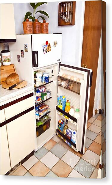 Mayonnaise Canvas Print - Fridge With Open Door by Martyn F. Chillmaid
