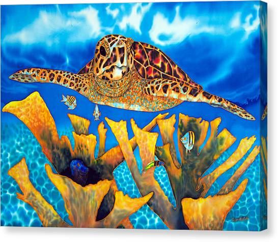 Friendly Hawksbill Sea Turtle Canvas Print