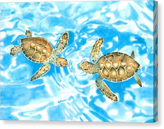 Friends Baby Sea Turtles Canvas Print