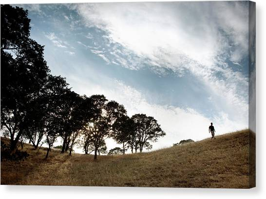 Disc Golf Canvas Print - Frisbee Golf In Skyline Park by Ryan Heffernan