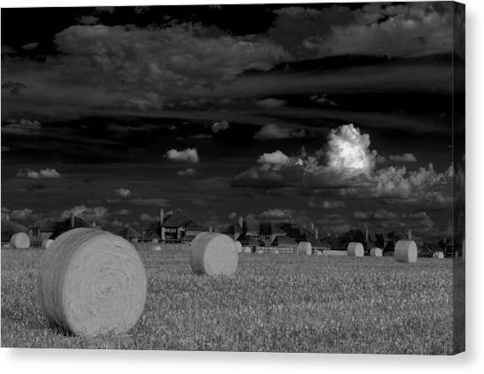 Hay Bales Canvas Print - Frisco Dream by Darryl Dalton