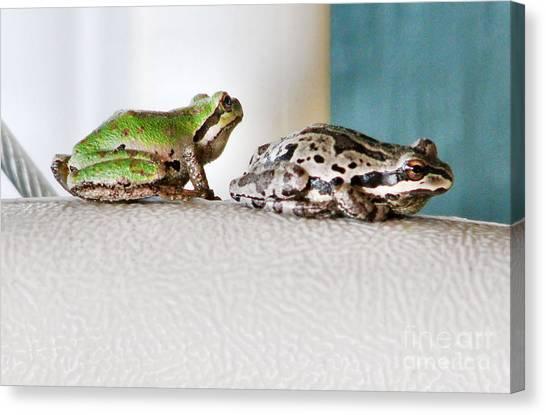 Frog Flatulence - A Case Study Canvas Print