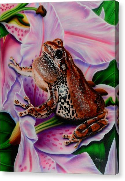 Frog Flower Canvas Print