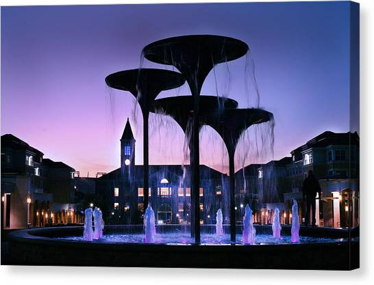 Frog Fountain Pano Canvas Print