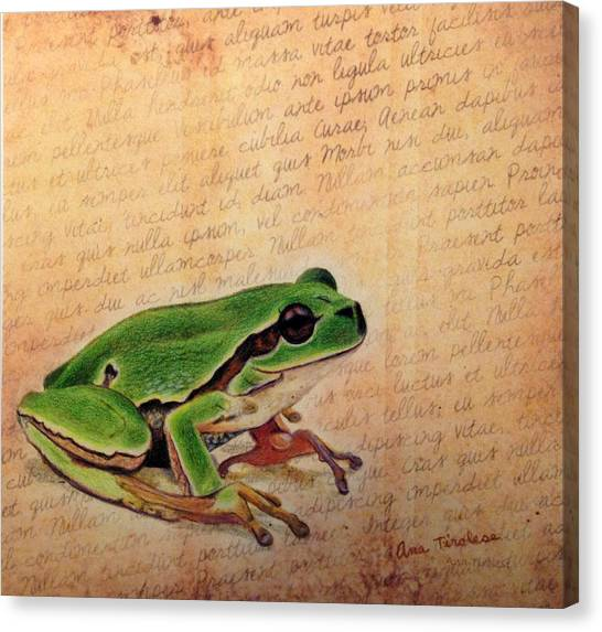 Frog On Paper Canvas Print