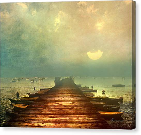 From The Moon To The Mist Canvas Print