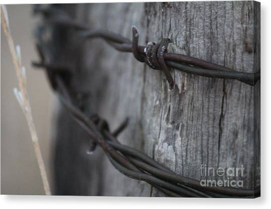 Canvas Print featuring the photograph Frost On The Wire by Ann E Robson