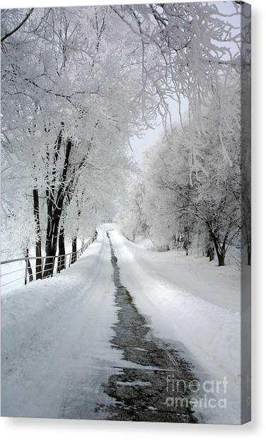 The Long Frosted Road Canvas Print