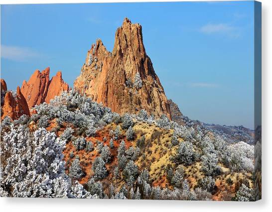 Frosted Wonderland 4 Canvas Print