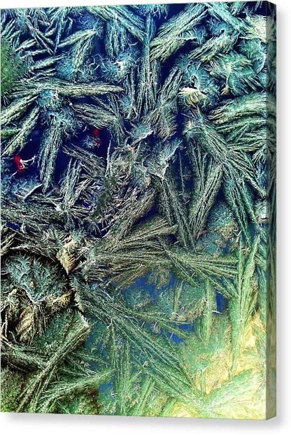 Frostian II Canvas Print