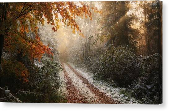 Rural Canvas Print - Frosty Fall by Vincent Croce