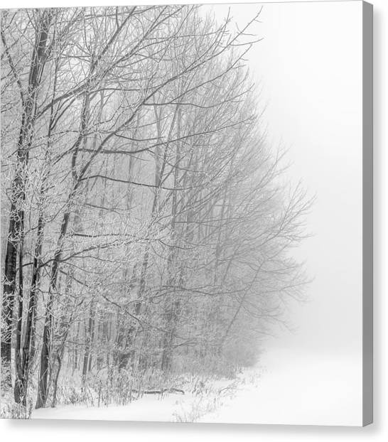 Frosty Forest Frontier Canvas Print