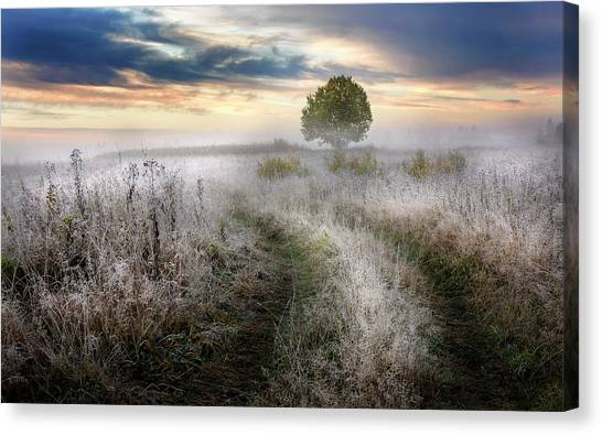 Frost Canvas Print - Frosty Morning by Kirill Volkov