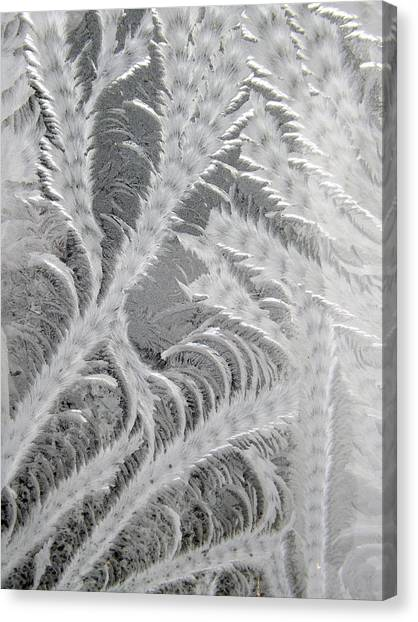 Frosty Window Art Canvas Print