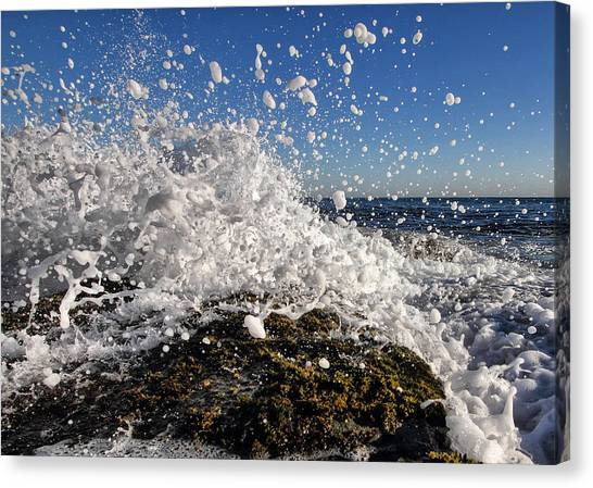 Froth And Bubble Canvas Print