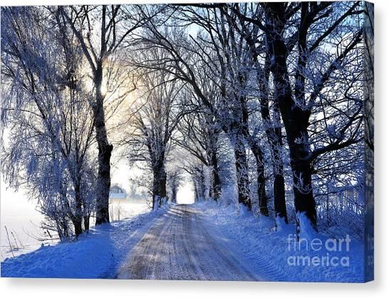Frozen Alley Canvas Print