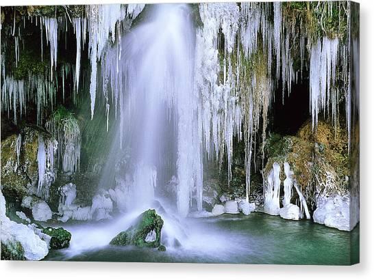 Frozen Beauty Aka Ice Is Nice Xi Canvas Print