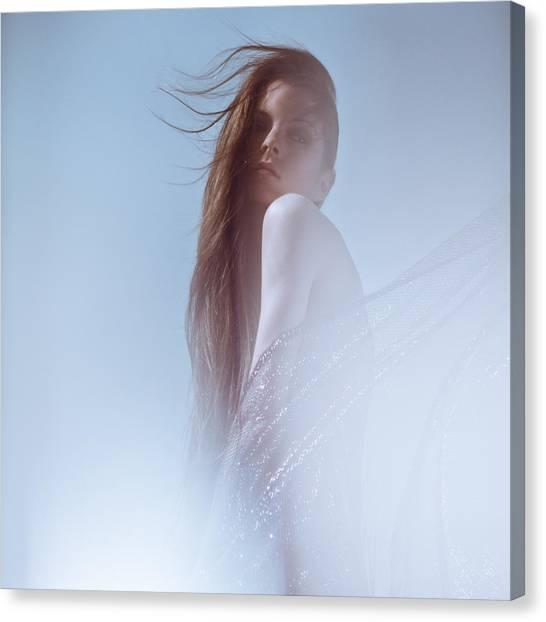Frozen Canvas Print by Eugenia Kirikova