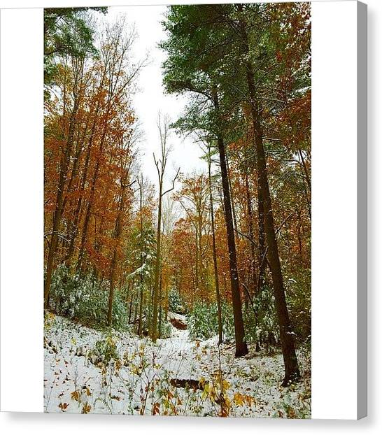 Appalachian Mountains Canvas Print - Frozen Fall by Simon Nauert