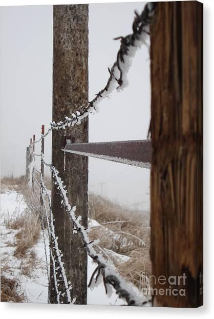 Frozen Fence Line Canvas Print
