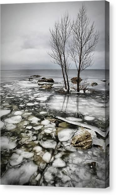 Frozen Lake Canvas Print by Vedran Vidak