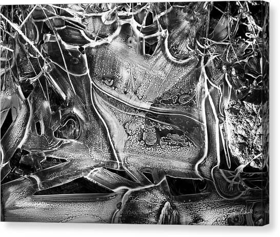 Frozen Over Canvas Print