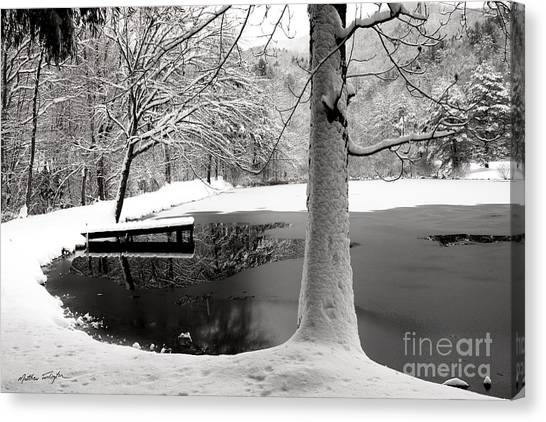 Frozen Pond 2014 Canvas Print