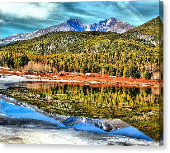 Frozen Reflection On Lily Lake Canvas Print by Rebecca Adams