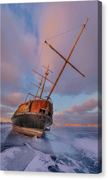Frozen Canvas Print by Richard Huang