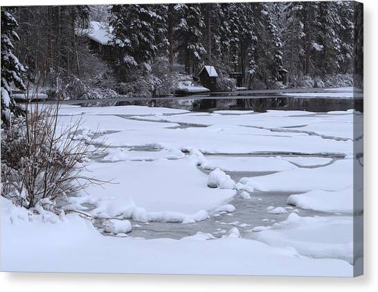 Frozen Silence  Canvas Print