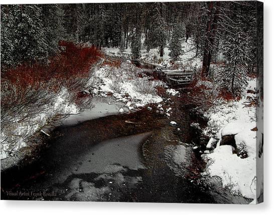 Frozen Stream II Canvas Print