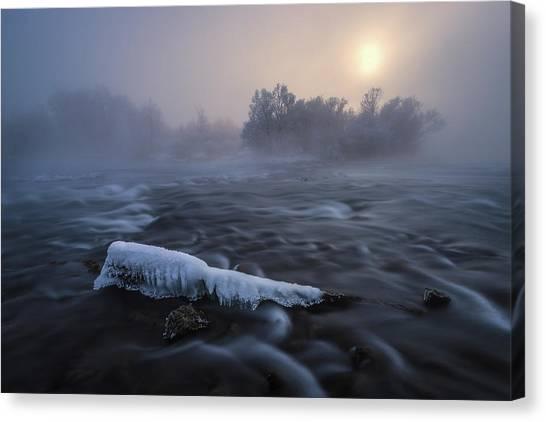 Frozen Canvas Print by Tom Meier