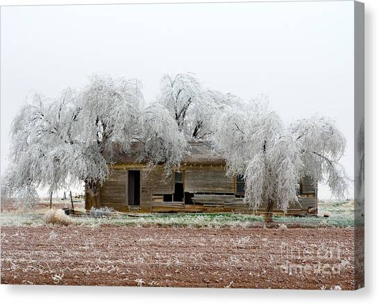 Frozen Trees And Shack Canvas Print by Mae Wertz