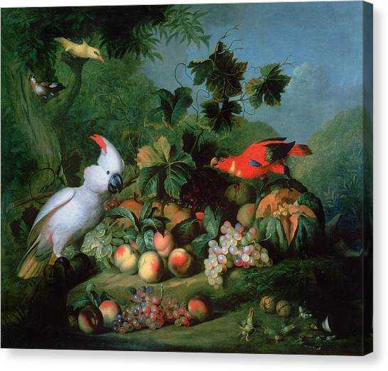 Cockatoo Canvas Print - Fruit And Birds by Jakob Bogdani or Bogdany