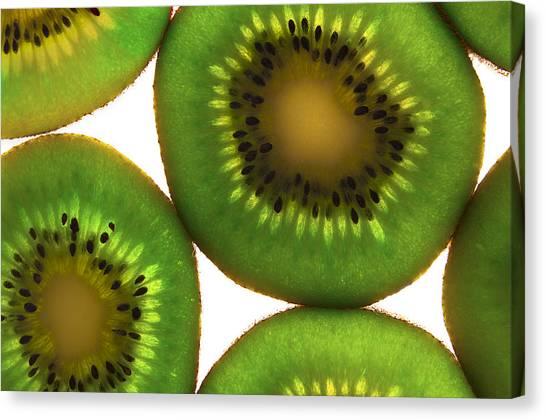 Fruitopia  Canvas Print