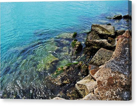 Ft Pierce Waters Canvas Print by Rachael M