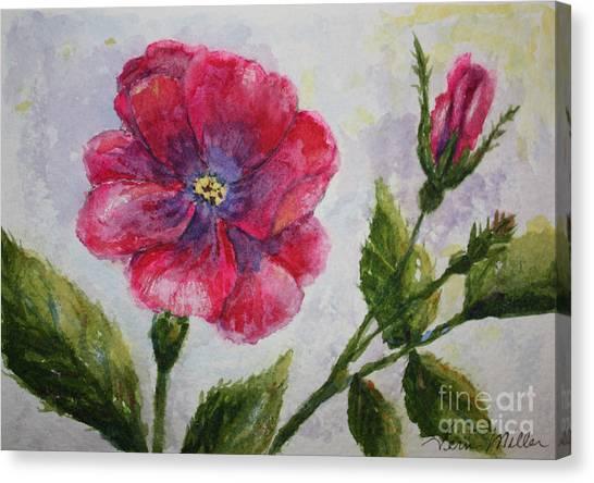 Fuchsia Rose And Bud Canvas Print by Terri Maddin-Miller
