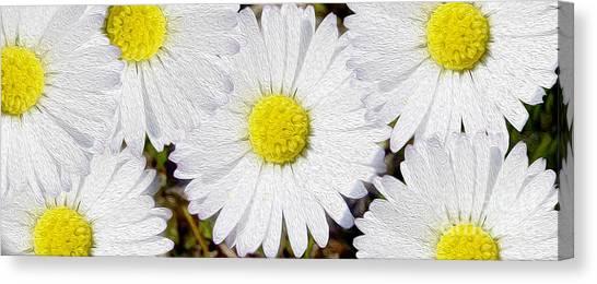 Blossom Canvas Print - Full Bloom by Jon Neidert
