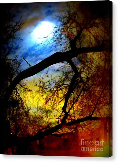 Full Crow Moon Canvas Print by Maria Scarfone