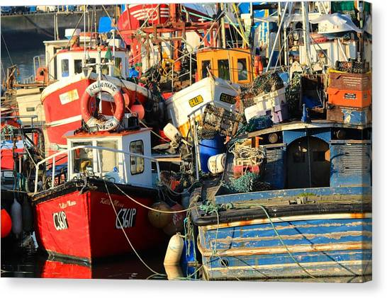 Full Harbour Canvas Print