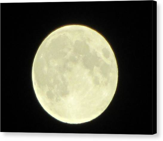 Full Moon Axis Canvas Print by Debbie Nester