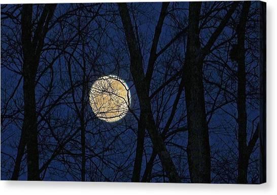 Full Moon March 15 2014 Canvas Print