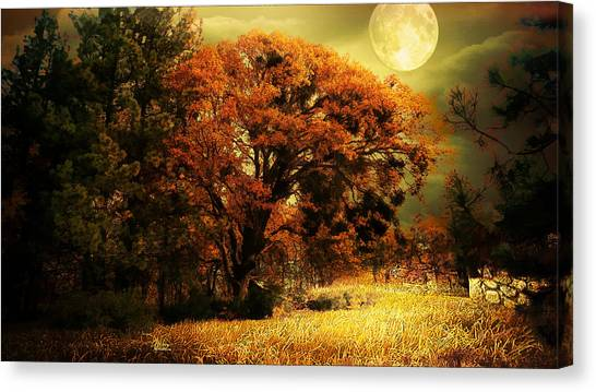 Full Moon Oak Canvas Print