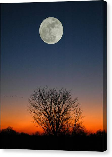 Full Moon Rising Canvas Print