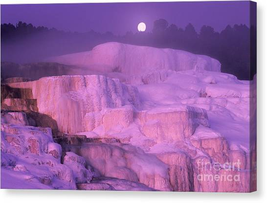 Full Moon Sets Over Minerva Springs On A Winter Morning Yellowstone National Park Canvas Print