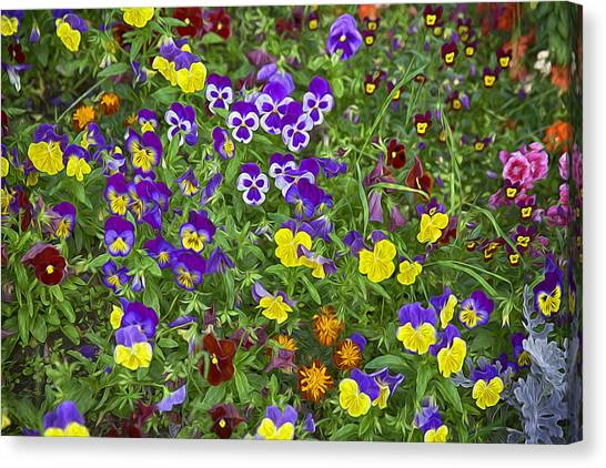 Full Of Flowers Canvas Print