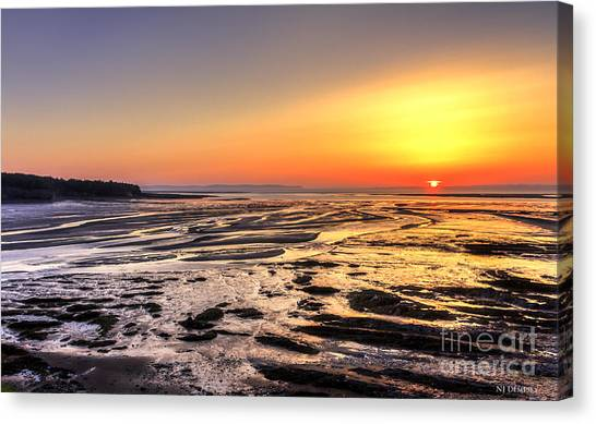 Fundy's Mud Flats Canvas Print